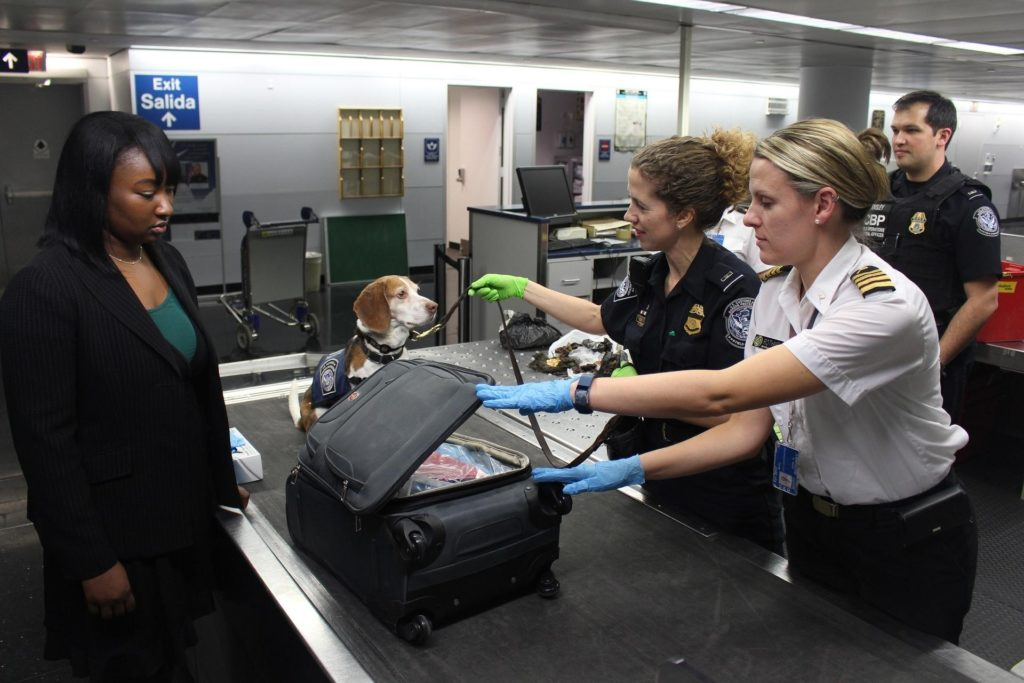 A person with a suitcase at a customs office